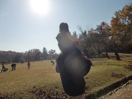 長岡悠久山公園 2010 秋_a0128408_18293725.jpg