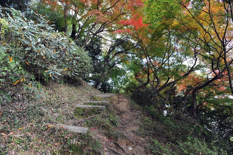 太宰府の紅葉 2010_a0042310_13445123.jpg