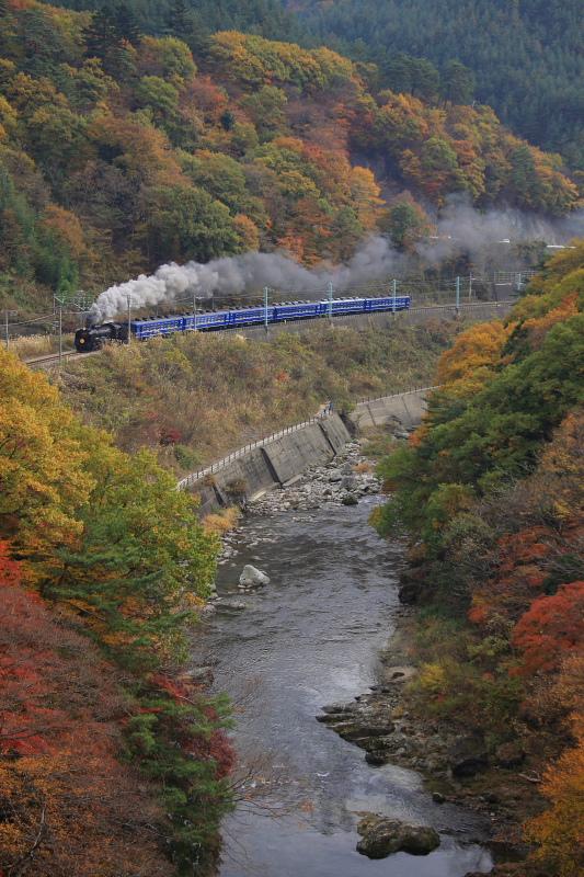 錦秋の諏訪峡 - 2009年11月 -_b0190710_21493647.jpg