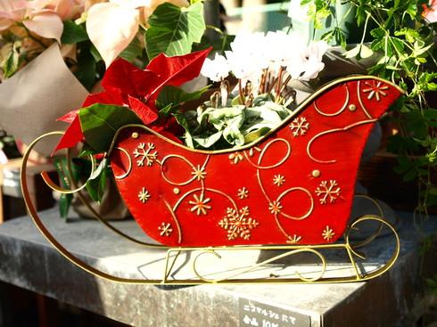クリスマスの朝市パート3_b0136223_1831221.jpg