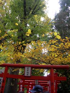 秋のワークショップ…がま口(リネン・ミニ)教室編_e0125731_694457.jpg