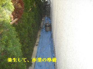 f0031037_2034950.jpg