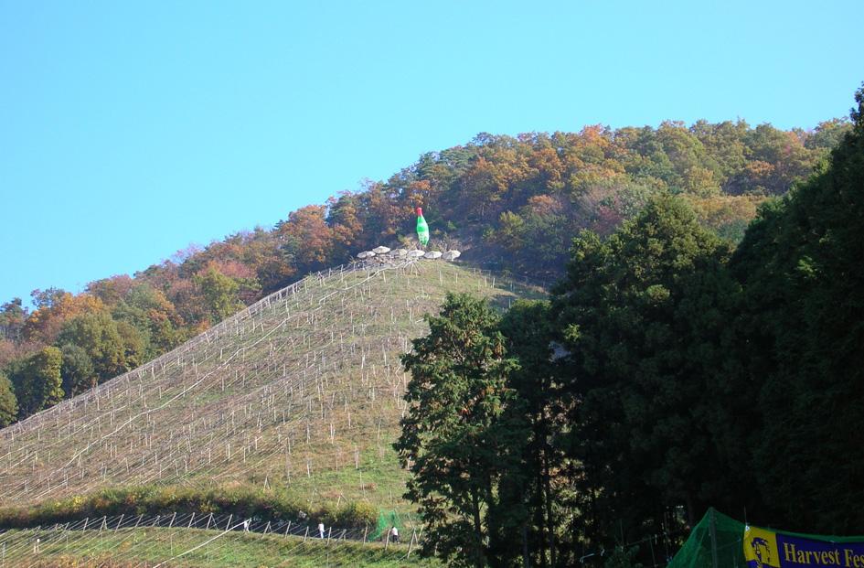 ココ ファーム 2010収穫祭 足利_e0127948_1403590.jpg