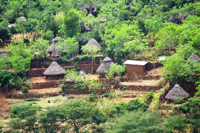 エチオピア(27) コンソでコーヒー休憩_c0011649_84276.jpg