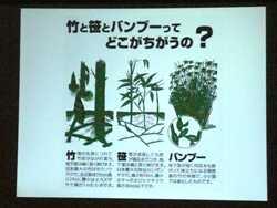 竹の勉強会_c0087349_5414173.jpg