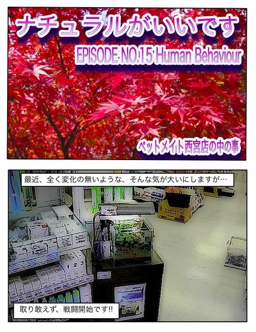 c0225669_22372682.jpg