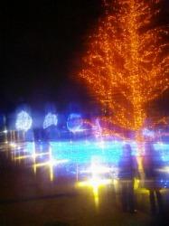 クリスマスへ向けて☆_a0087471_355239.jpg