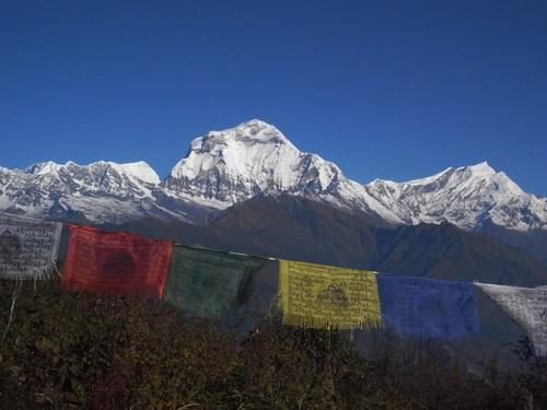 ネパール日記 3_e0111396_1582858.jpg