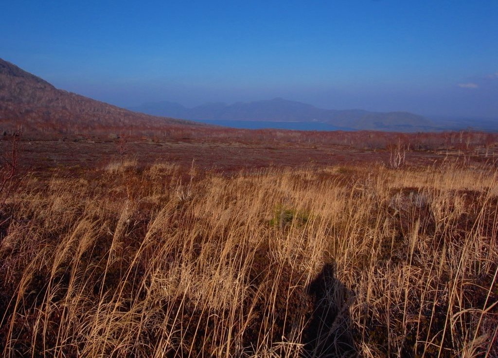 11月21日、樽前山、風不死岳と紋別岳-写真をメインに-_f0138096_9571947.jpg