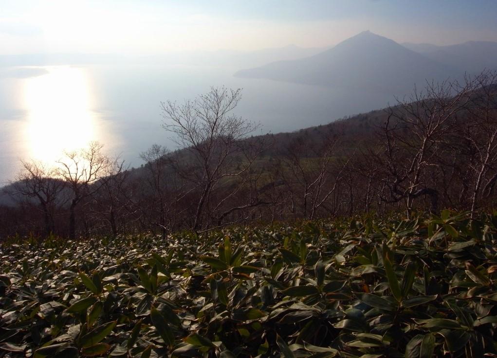 11月21日、樽前山、風不死岳と紋別岳-写真をメインに-_f0138096_9585971.jpg