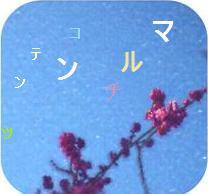 e0119297_1039162.jpg