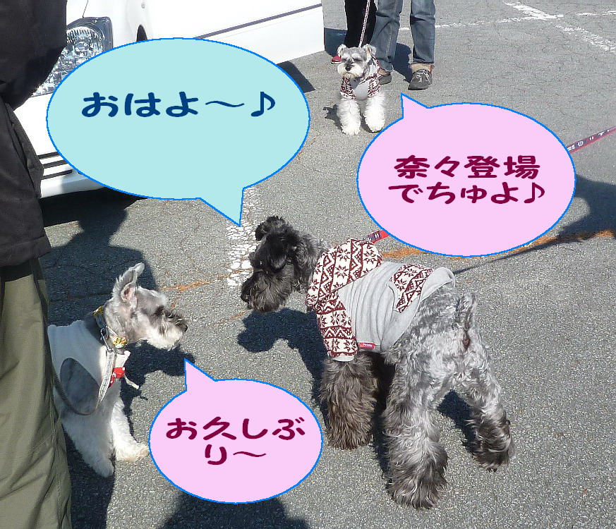 c0138198_8275227.jpg