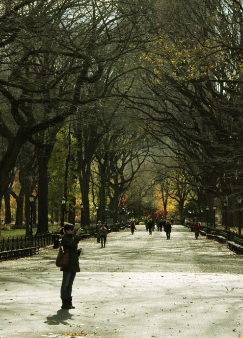 セントラルパーク紅葉お散歩コース (2) Mallまで北上_b0007805_1427388.jpg