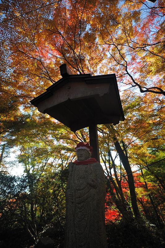 2010京都の紅葉 金蔵寺_f0032011_17163019.jpg