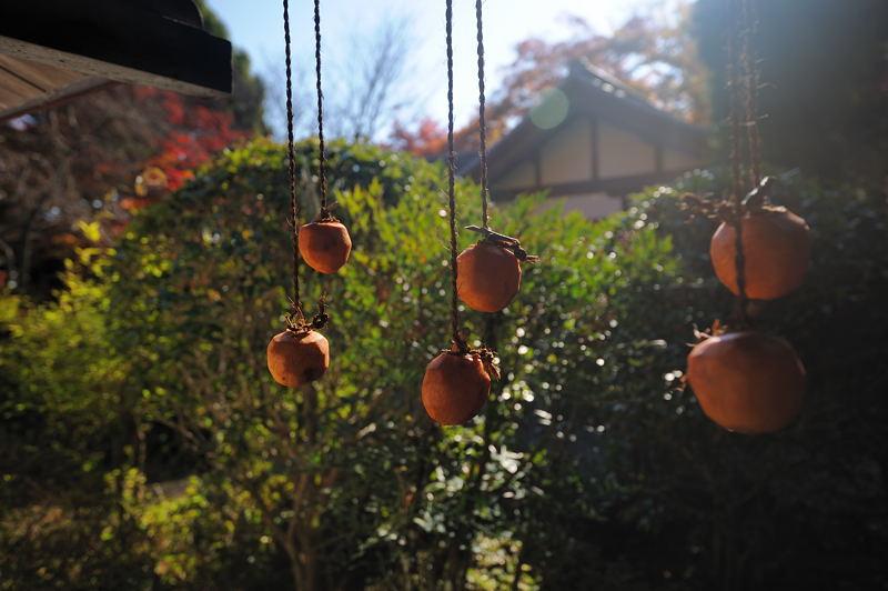 2010京都の紅葉 金蔵寺_f0032011_17164466.jpg