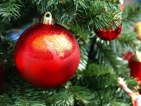 クリスマスの朝市 パート4 _b0136223_14214288.jpg