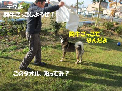 f0143123_20103680.jpg