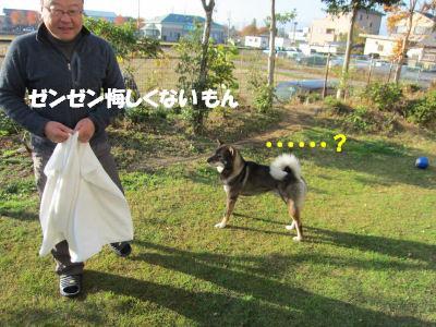 f0143123_20113281.jpg