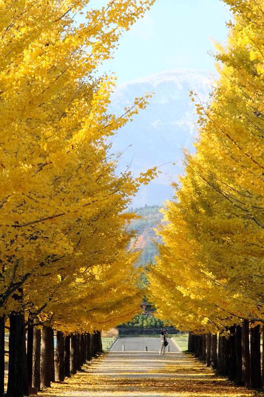 福島市 運動公園_d0106628_9441511.jpg