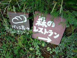益子陶器市(2)… かまぐれの丘&森のレストラン編_e0125731_11451172.jpg