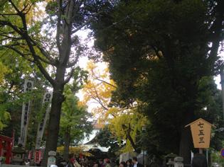 手創り市 鬼子母神 & キアズマ珈琲さんへ_e0125731_7143632.jpg