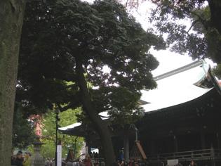 手創り市 鬼子母神 & キアズマ珈琲さんへ_e0125731_716196.jpg