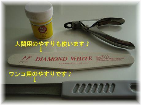 b0206444_19451012.jpg