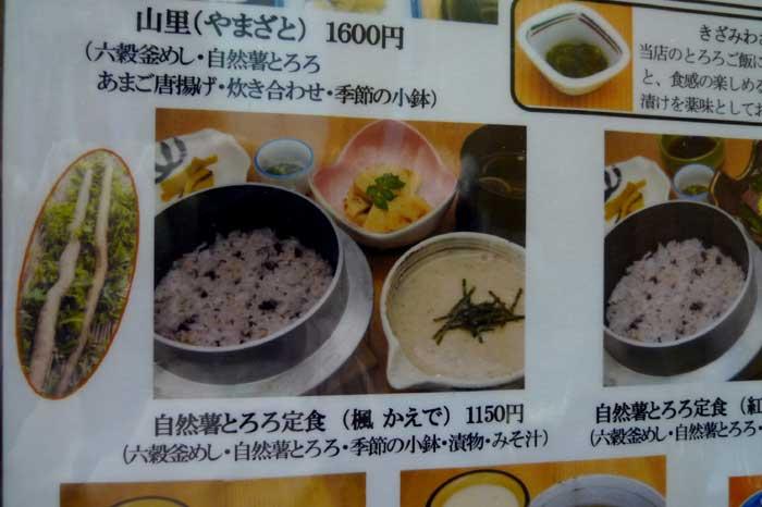 自然薯とろろ定食 @ 道の駅 みなみ波賀_e0024756_16233693.jpg