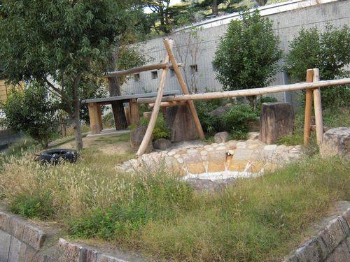 王子動物園をお散歩_b0024758_23401121.jpg