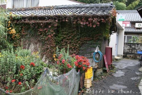 滋賀県沖島_b0153363_18124614.jpg