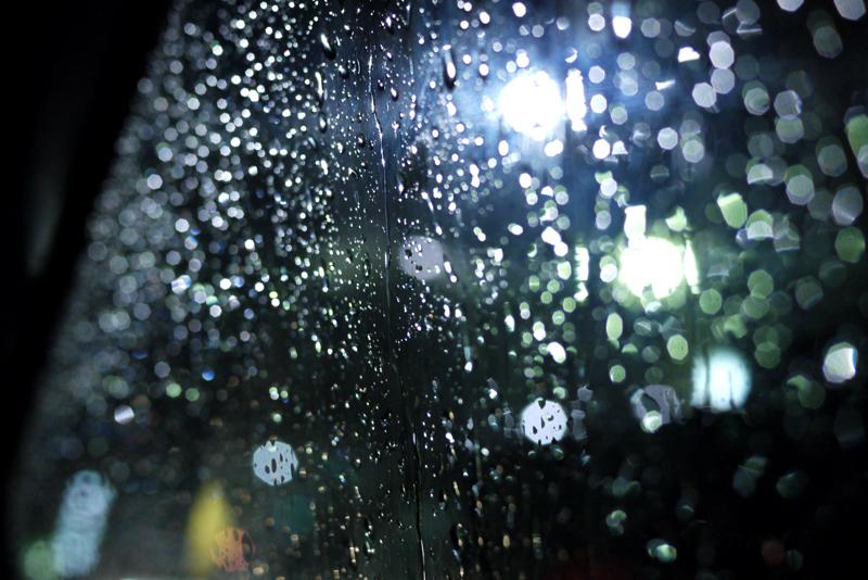 #10-239    Rainy day_b0065572_922638.jpg