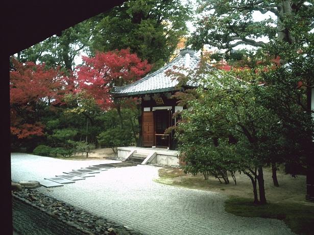 f0152674_9564185.jpg