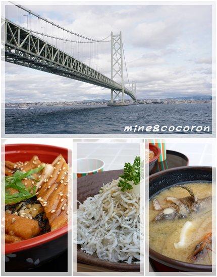 徳島競技会_a0053987_1522534.jpg