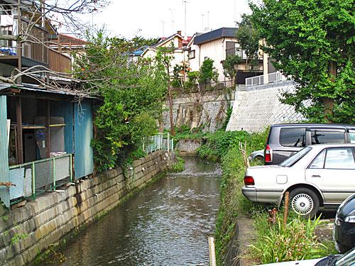 落合川を辿る(6)立野川をさかのぼる_c0163001_23522211.jpg