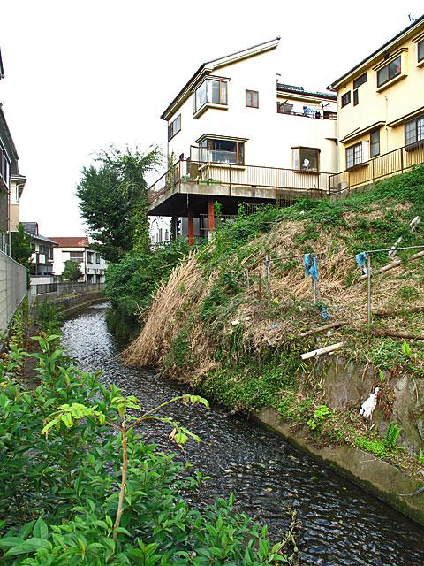 落合川を辿る(6)立野川をさかのぼる_c0163001_23522745.jpg