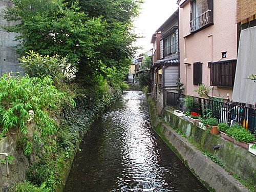 落合川を辿る(6)立野川をさかのぼる_c0163001_23523480.jpg