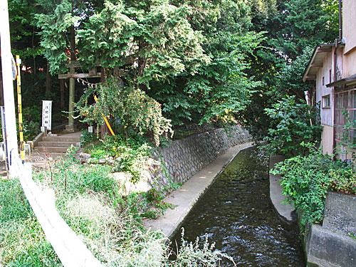 落合川を辿る(6)立野川をさかのぼる_c0163001_23523949.jpg