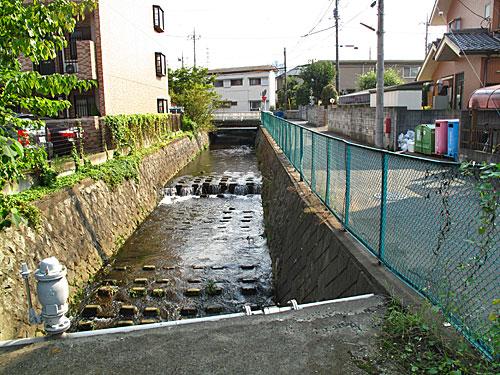 落合川を辿る(6)立野川をさかのぼる_c0163001_23524382.jpg