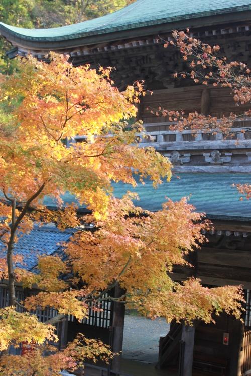 晩秋と初冬の大本山永平寺_f0229508_1612849.jpg