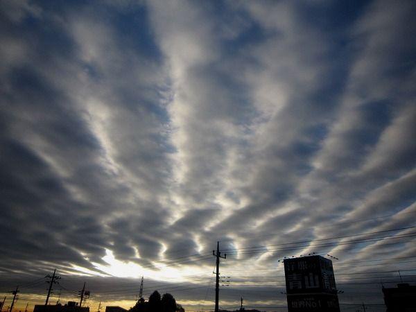 今日の空。_b0157216_801572.jpg