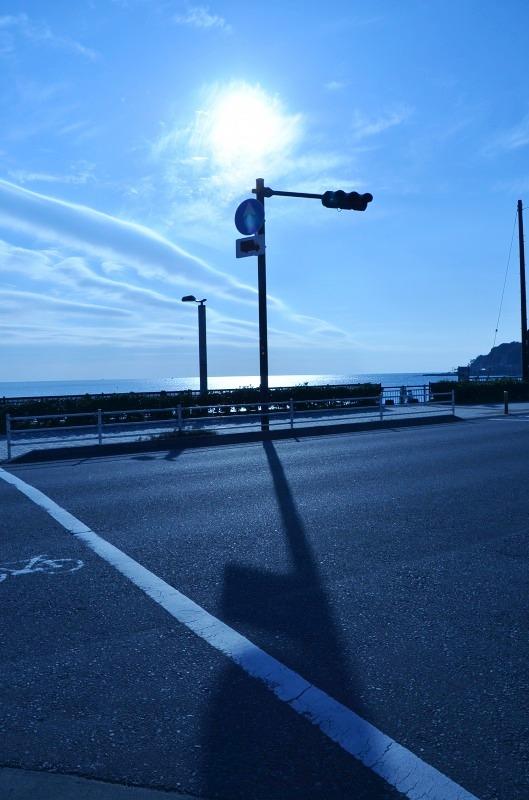 d0065116_2011820.jpg