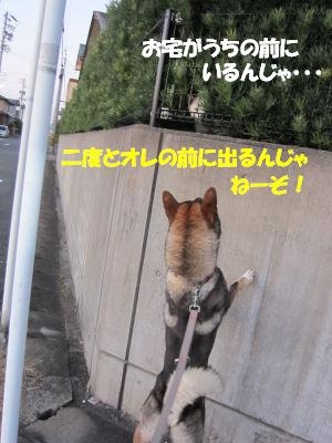 f0143123_20111950.jpg