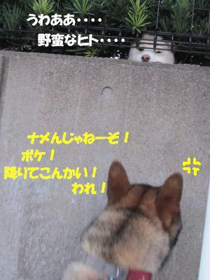 f0143123_2051994.jpg