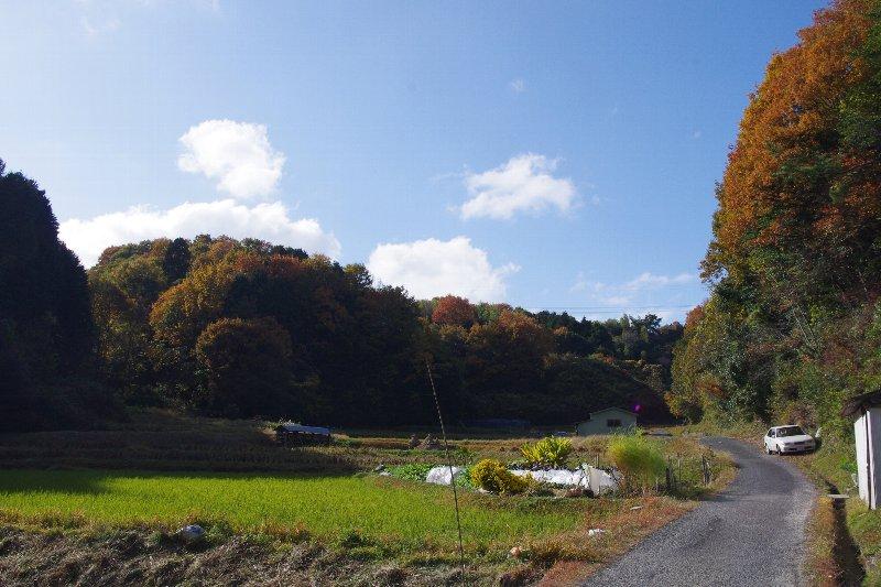 交野山へ_c0113733_1143798.jpg