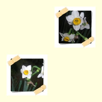 f0031546_21413212.jpg