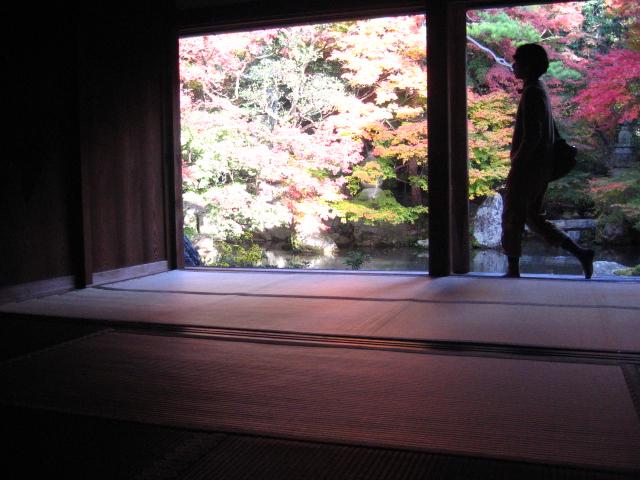 そうだ京都へ行こう_a0160153_20295296.jpg
