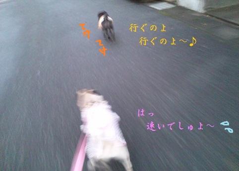 b0197865_14505990.jpg