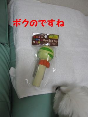 b0193480_165572.jpg