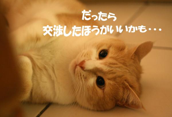 f0068385_2404394.jpg