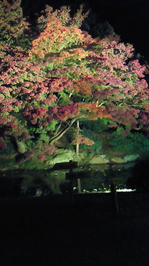 栗林公園_a0155290_12261416.jpg